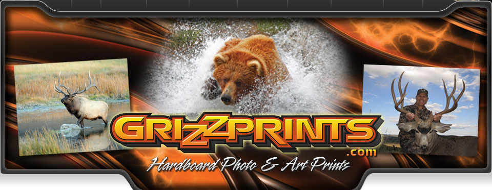 GrizzPrints